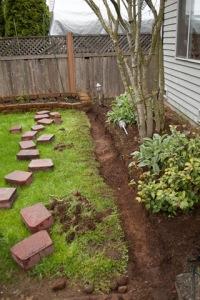 backyard-7744