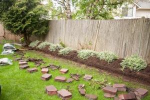backyard-7751