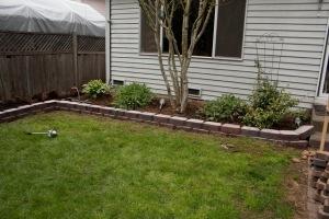 backyard-7752