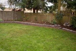 backyard-7757