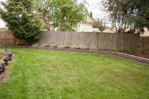 backyard-7759