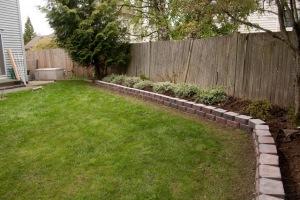 backyard-7762