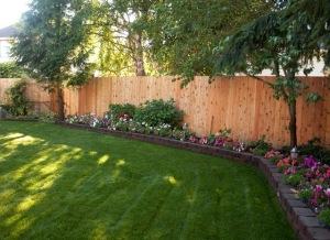 backyard_complete-8383