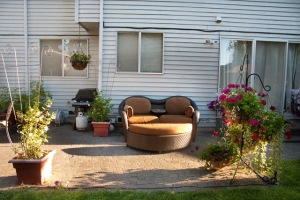 backyard_complete-8387