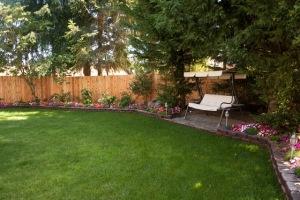 backyard_complete-8398