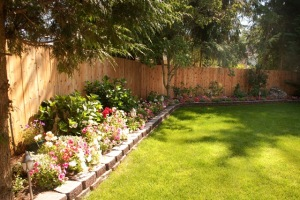 backyard_complete-8406