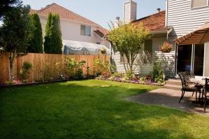 backyard_complete1-8401