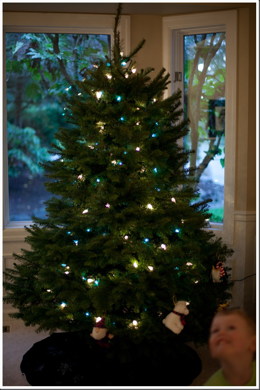 Tree-1207