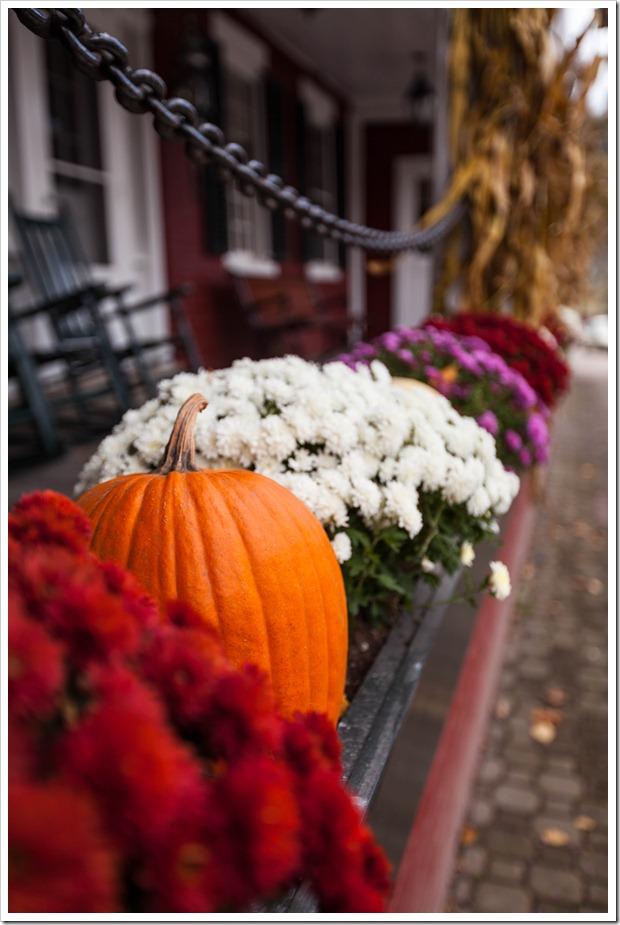 pumpkins-5997