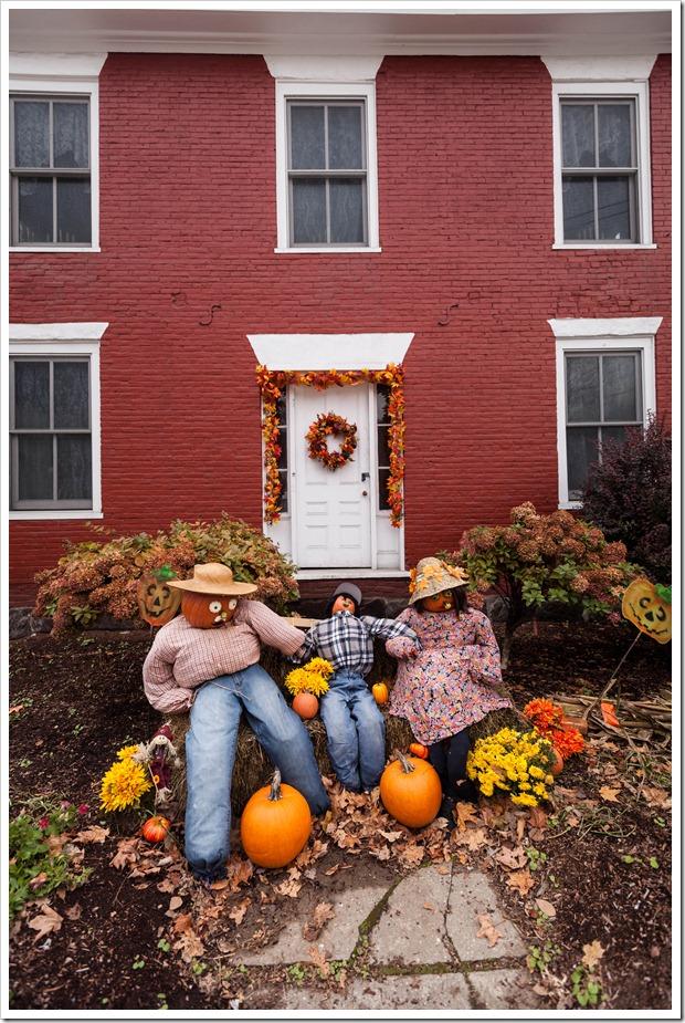 pumpkins-6000