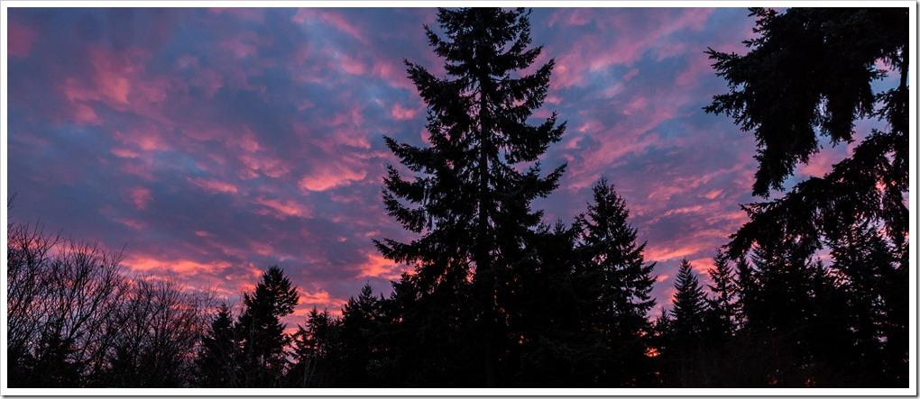 Sunrise-7482