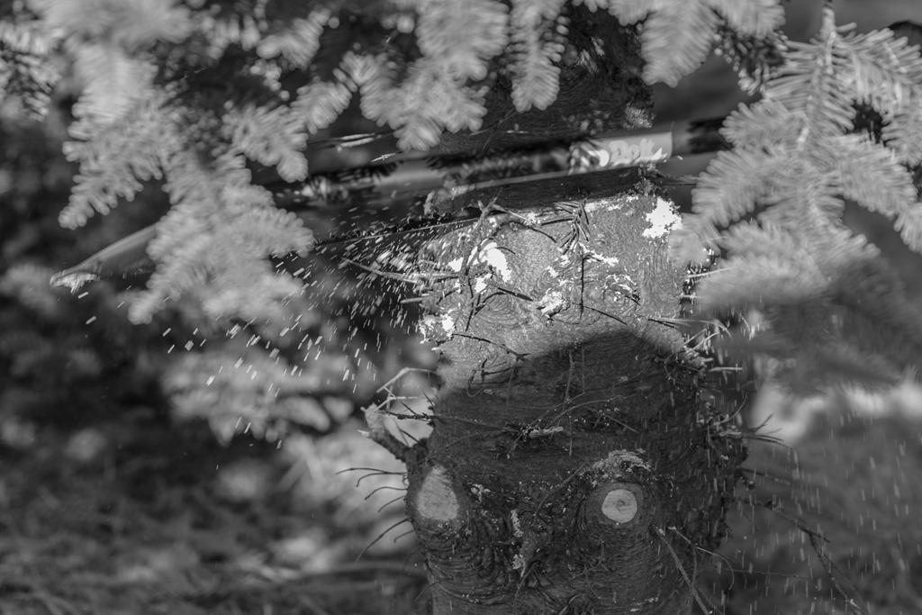 ChristmasTree-13